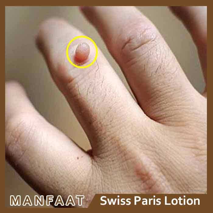 Review Swiss Paris Lotion