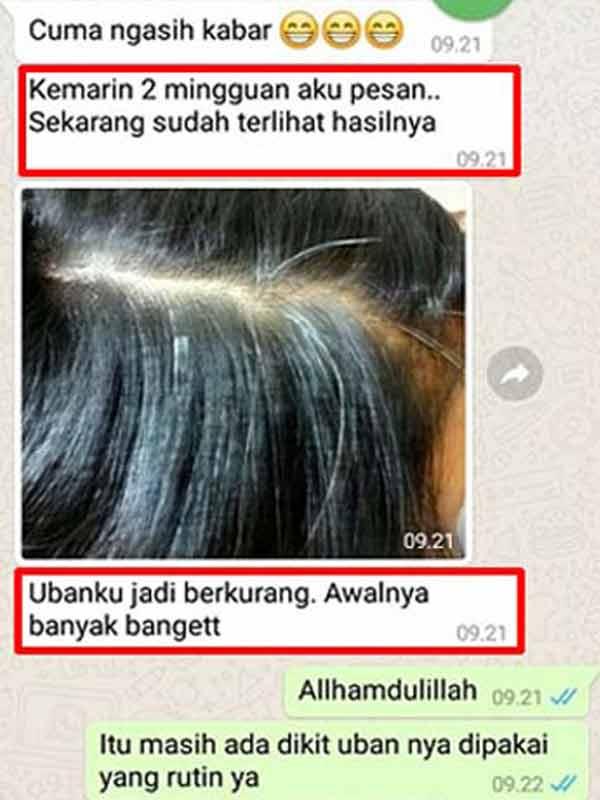 Efek Samping Minyak Kayu Balitung