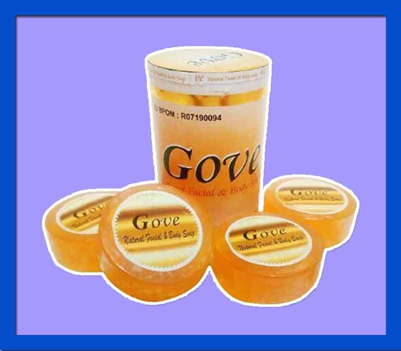Manfaat Sabun Gove Untuk Eksim