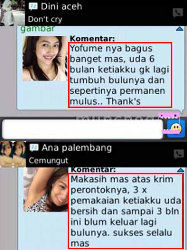 Review Yofume Perontok Bulu